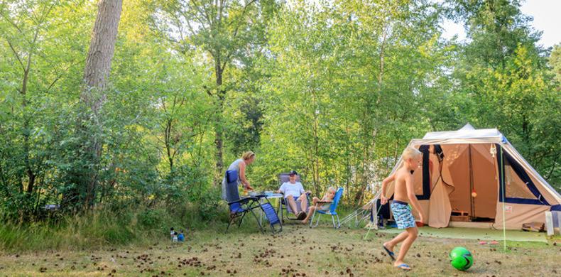 RCN-de-Noordster-vakantiepark-in-Dwingeloo-grasveld-met-tent-en-mensen (3)