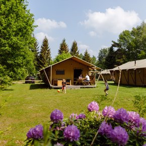 RCN-vakantiepark-de-Roggeberg-Safaritent-de-Wold-Lodge (1)