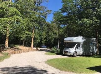 RCN het Grote Bos | Camper Stellplatz